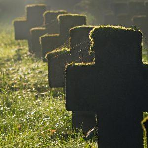 Cmentarz wojenny (1)