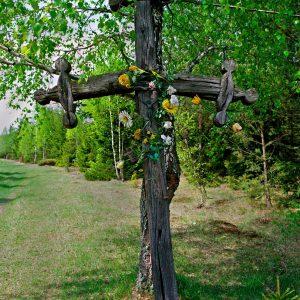 Biebrzański krzyż