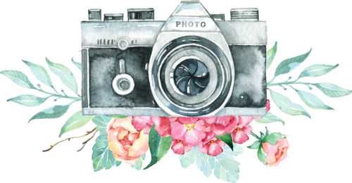 toppng.com-vintage-camera-logo-png-png-royalty-free-stock-camera-with-flowers-3508x1772